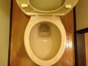 洋式トイレの掃除後