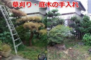 草刈り・庭木の手入れ