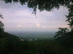 岐阜の平野の風景