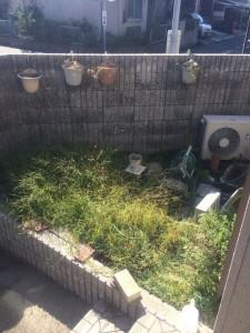 庭のリニューアル