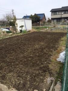 畑作業(片付け~耕耘まで)アフター1