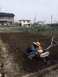 畑作業(片付け~耕耘まで)アフター2