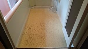 浴室清掃前(床、排水溝)