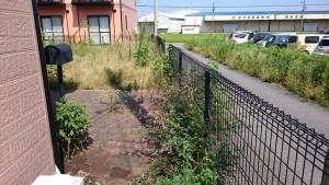 アパート敷地の除草前3