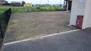 アパート敷地の除草後1